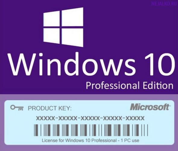license_windows